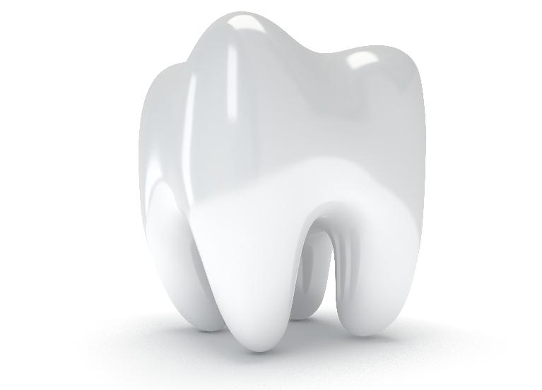 an image of a tooth in front of a white backdrop | dentist high point nc
